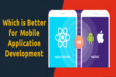 React Native vs Real Native Framework  Which is better for Mobile Apps?