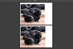 How to Add Multiple Image to PDF Using JSPDF Javascript Code
