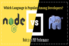 Node.js vs. PHP: Which Language is Popular among Developers?