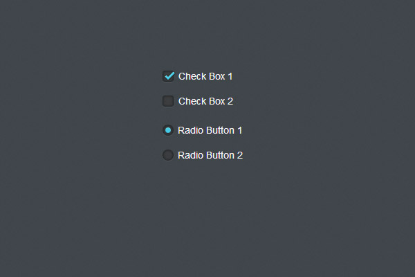 How to style checkbox using CSS