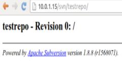 How to install and setup SVN on Ubuntu 14.04 ?
