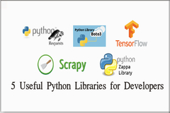 Top 5 Useful Python Libraries Web Developers Can't Live Without