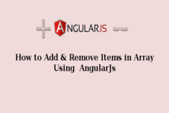 How to Add and Remove items in array using AngularJS